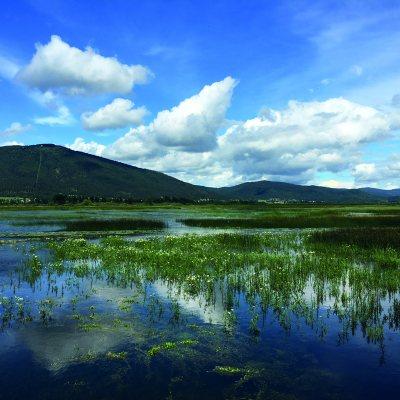 Zirknitzer See: er ist da - oder nicht!